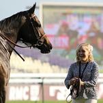 Longchamp 3. 10. 2015