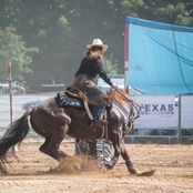 015_rodeo