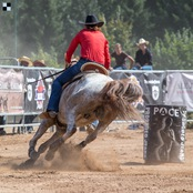 019_rodeo