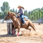 024_rodeo