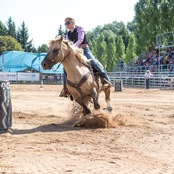 029_rodeo