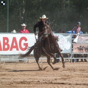 036_rodeo