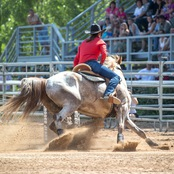 037_rodeo