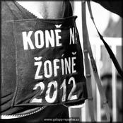 008_zofin