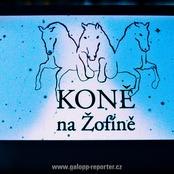 032_zofin