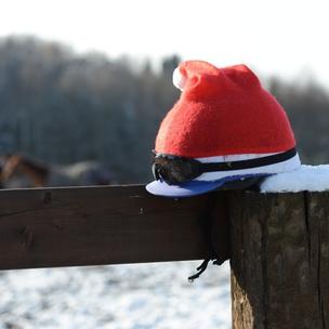 Vánoce u Zdeňka Mimry