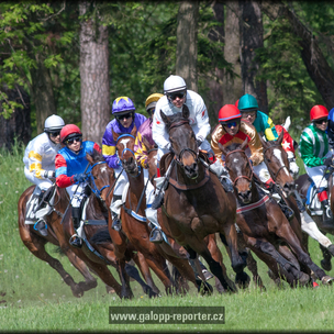 Pardubice-8-5-2012