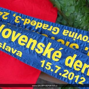 Bratislava-DERBY-15-7-2012