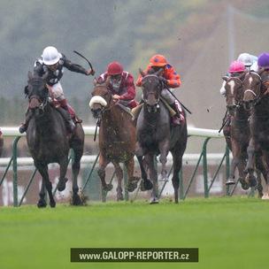 Paris-Longchamp-10-2012