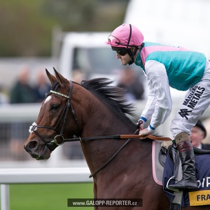 ASCOT-FRANKEL-The-Final-mission-20-10-2012