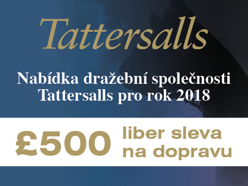 Tattersalls2018MiscCzechTravelBanner120pxx90px