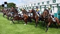 Authentic míří za druhým klasickým vítězstvím, Slovenské Derby zachráněno