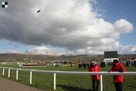 """""""Něžný obr"""" Adayar zválcoval starší koně v King George VI & Queen Elizabeth Stakes"""
