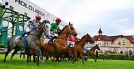Karlovy Vary: Orleano využil skvělou formu a poprvé vyhrál dostih I. kategorie