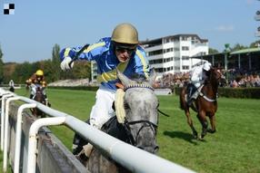 Klasická steeplechase je doménou mladších koní, jaký bude 24. ročník Zlatého poháru?