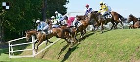Velká pardubická: Kvalifikaci splnilo 32 koní. Přijdou ke slovu handicapy?