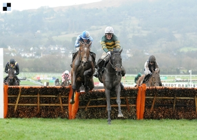 Champion Hurdle: Obhájce Buveur D'Air vyzve rekonvalescent Faugheen