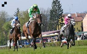 Pojedenácté se sejde na závodišti v Karlových Varech evropská šlechta